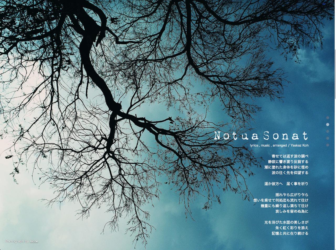『Notua Sonat』ジャケットサイト